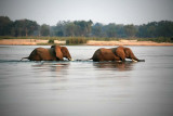 Crossing the Zambezi River