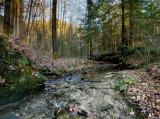 Whittleton Arch Trail - Water goes underground