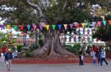 Los Angeles Plaza