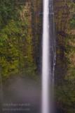 _ADR4593 akaka falls w.JPG