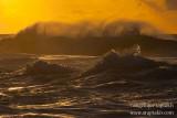 _ADR7910 kauai north shore waves w.JPG