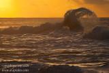 _ADR7919 kauai north shore waves w.JPG