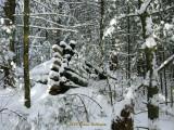 Log Cabin Remains