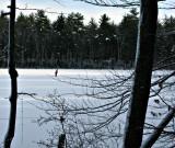 Puffer.pond.0334.jpg