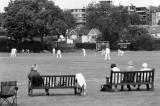 Celebrity Cricket