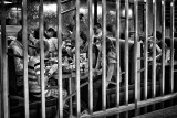 Dining Behind Bars :))