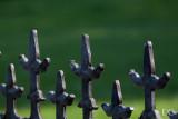 detail, wrought iron gate