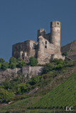 castles on the Rhine