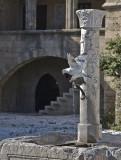 thirsty pigeon, Rhodes