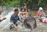 Deerland & Elephant Sanctuary