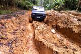 Kelau Forest Reserve