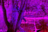 Radical Infrared