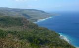 Tutuala coast & forest