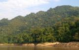 Mekong forest landscape