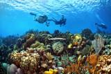 Kalabas Reef