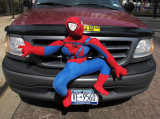 Spiderman Bumper Guard