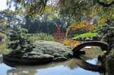 November 1, 2011 - Brooklyn Botanic Garden