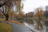 Public Garden - Boston, MA