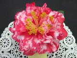 Camellia Show