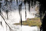 February 12, 2012 Photo Shoot - Dunnellon & Rainbow Springs State Park, Florida
