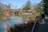 March 20, 2012 Photo Shoot - WSV Sasaki Garden & Brooklyn Botanical Garden
