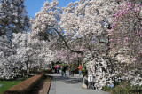 March 20, 2012 - Spring