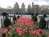 Spring 2012 Washington Square Park