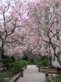 March 25-27, 2012 Photo Shoot - Greenwich Village