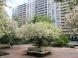 April 9-13, 2012 Photo Shoot - Greenwich Village Gardens, Union Square, Peter Stuyvesant Square Area & Gramercy Park