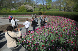 April 14, 2012 Photo Shoot -  Central Park Conservatory Gardens and Lake Area