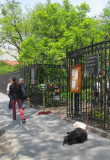 April 21, 2012 Photo Shoot - Greenwich Village Gardens, WSP & Street Scenes