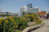 June 30, 2012 Photo Shoot - Sasaki Garden at W 45th & 6th Ave & Greenacre Park, High Line