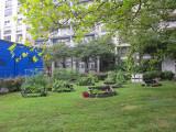 Summer 2012 - Washington Square Village Gardens