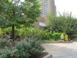 August 24-25, 2012 Photo Shoot - Greenwich Village, Washington Square Park