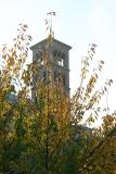 Judson Church Bell Tower & Cherry Tree Foliage