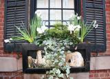 Residence Flower Box