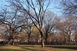 East Park View