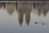 Reservoir & Central Park West Skyline Reflection