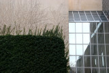 Metropolitan Museum of Art, Ivy Wall & Window Reflections