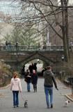 South Bridge - Metropolitan Museum of Art