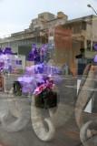 Floral Shop Window