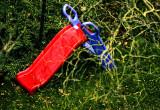jungle  playground (in R. Rosetti colors)