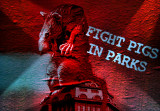 Fight pigs in parks