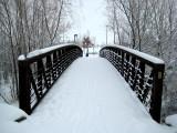 The bridge to the park
