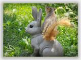 Giddy-Up, Rabbit!!