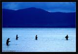 Thailand -  Koh Phangan - fisherman