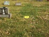 Memorial Placed
