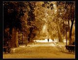 ... Sevilla memories ...