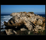 ... in Baleal island - Portugal