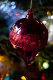 Festive  colour